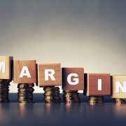Controlling cost margins with an ERP system